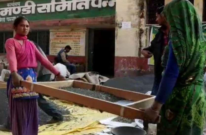 प्रशासन के छन्नों में अटकी किसानों की दिन-रात की मेहनत, मंडी कर्मचारियों की लापरवाही बढ़ा रही दर्द
