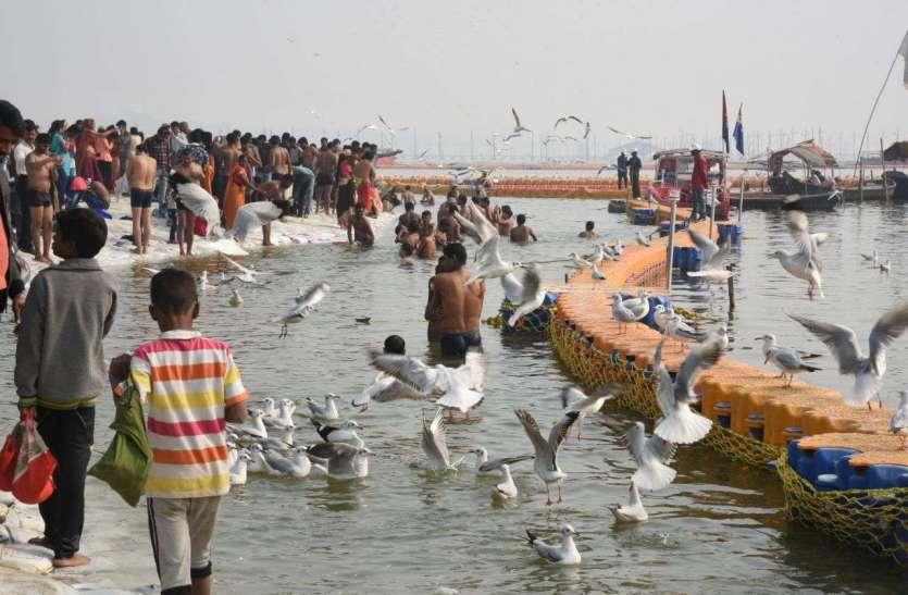 इन तस्वीरों में देखिए कुंभ मेले की खूबसूरती और उसके विविध रंग...