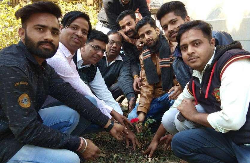युवा सप्ताह के तहत की साफ-सफाई, किया पौधरोपण