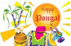 प्रधानमंत्री, राज्यपाल और मुख्यमंत्री ने पोंगल पर दी शुभकामनाएं