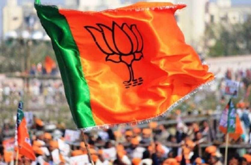 मंत्री हारे, भाजपा का वोट बैंक भी घटा, बसपा ने बढ़ाई मुश्किल