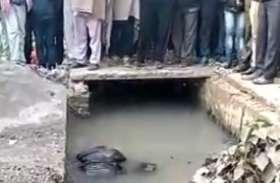 अलवर में यहां रात को नाले में गिरा बुजुर्ग, रातभर पानी में रहने से हो गई मौत, देखें वीडियो