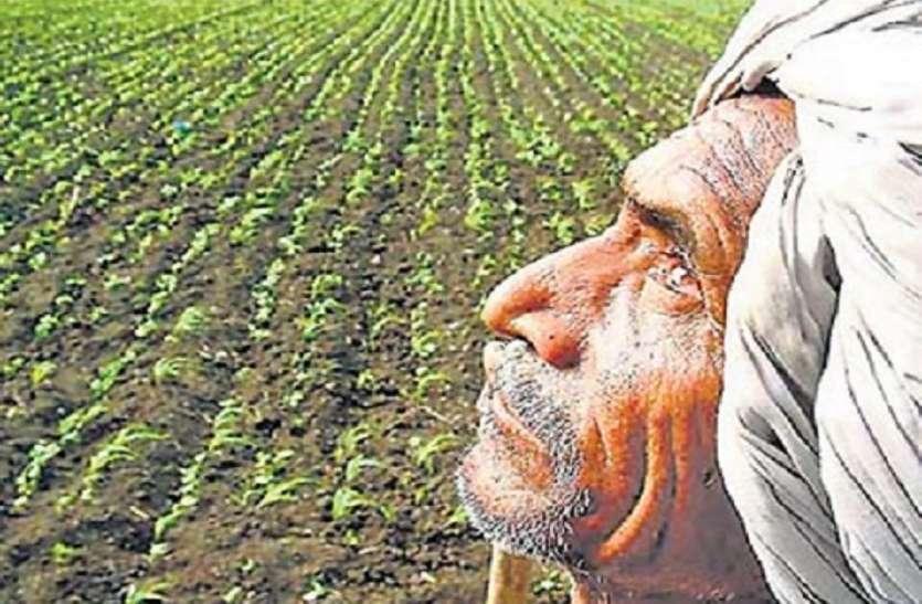 राजस्थान में किसान कर्जमाफी को लेकर आई ये बड़ी खबर, जिला कलेक्टर के लिए जारी हुए ये निर्देश