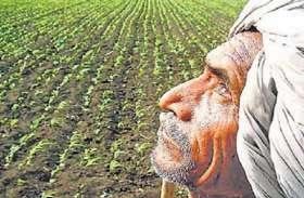भ्रम न फैलाए भाजपा, किसानों का कर्ज होगा माफ: विधायक