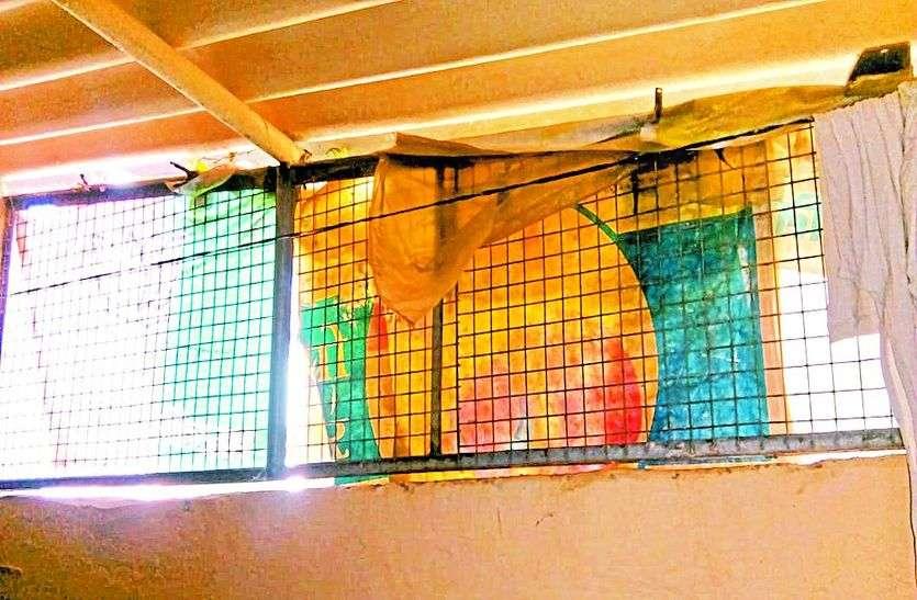 बंदरों के आतंक से जेल में तब्दील हुए घर