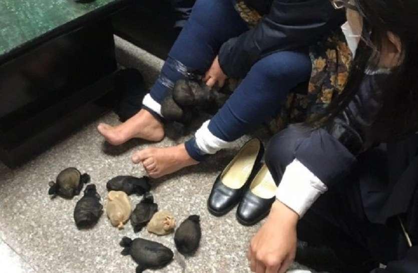 महिला की चाल पर हुआ पुलिस को शक, जांच में निकली हैरान कर देने वाली सच्चाई