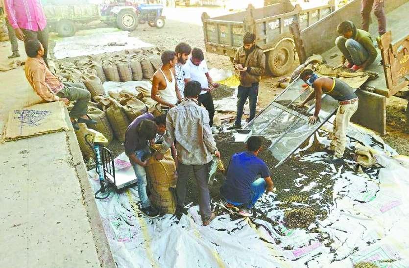 भावांतर में उपज बेची, 700 किसानों ने जमा नहीं कराए अब तक दस्तावेज