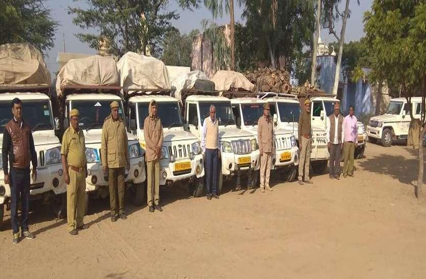 हरियाणा में चार सौ रुपए क्विंटल बिकती है हरी लकड़ी, इसलिए कर रहे थे ये काम