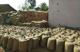 किसानों के पहरे के बीच केन्द्रों से चोरी हो रही धान