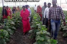 पॉली हाऊस का जायजा ले पूर्व सीएम ने उठाया स्ट्रॉबेरी-खीरा के साथ भोजन का लुत्फ