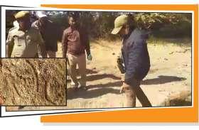 मेहराना एनीकट के पास मिले बाघ के पगमार्क