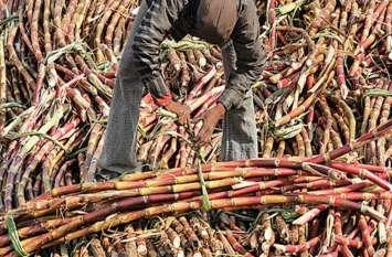 इस्मा ने कहा- भारी कर्ज में डूबे चीनी मिल्स, किसानों का 19 हजार करोड़ बकाया