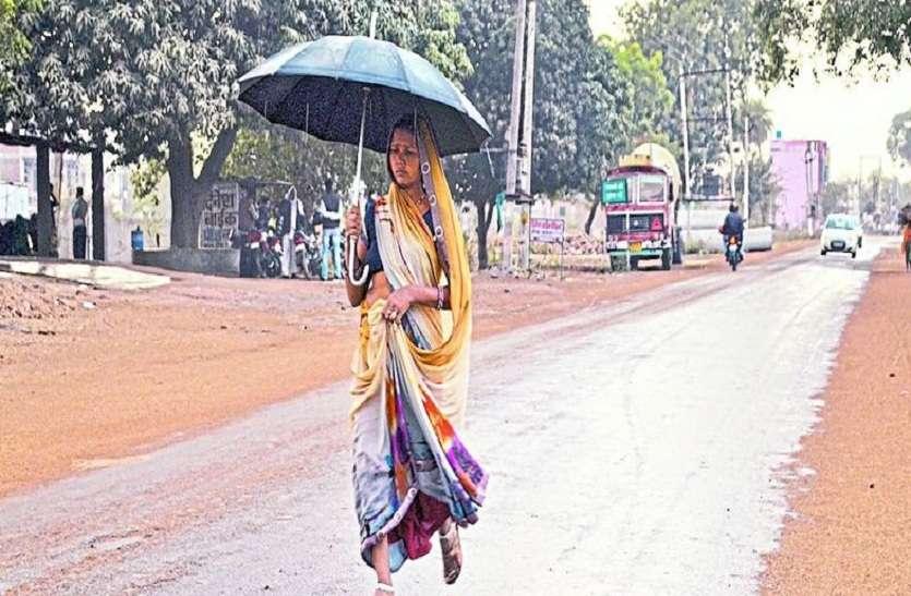 मौसम का बदला मिजाज, तेज हवा व बारिश से सरसों में नुकसान को लेकर बढ़ी चिंता