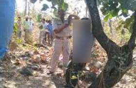 सागौन प्लांटेशन में पहुंचा वन आरक्षक तो ये नजारा देख रह गया सन्न, फिर पहुंच गई पुलिस और...