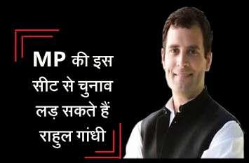 राहुल गांधी MP की इस सीट  से लड़ेंगे लोकसभा 2019 चुनाव! जानिये कांग्रेस की रणनीति