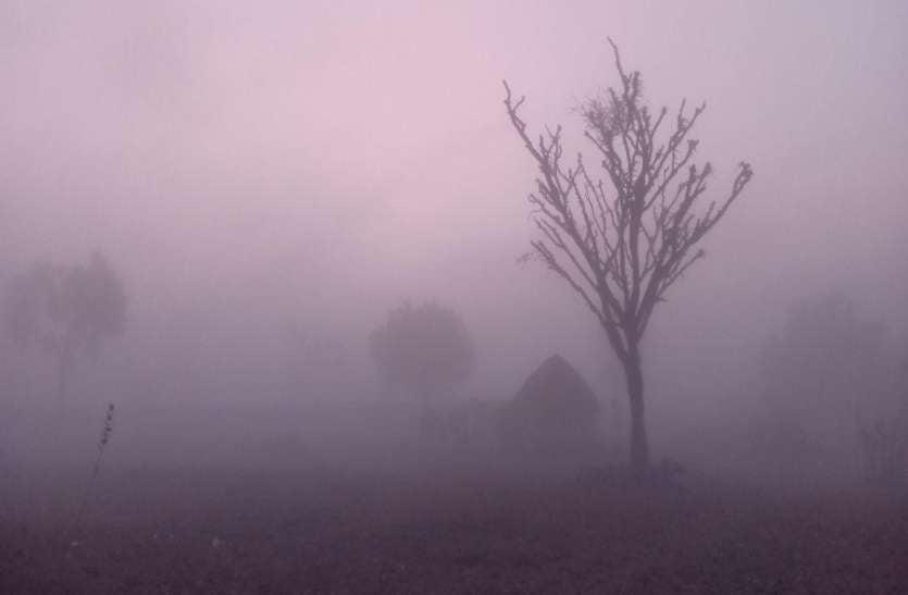 शेखावाटी में कड़ाके की सर्दी का दौर, फतेहपुर सबसे सर्द