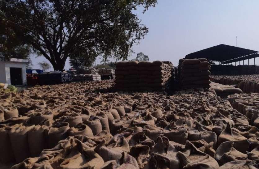 मिलर्स की मनमानी से धान पर मंडरा रहा भीगने का खतरा