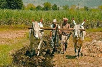 इस जिले के 2 लाख 22 हजार किसानों के लिए खुशखबरी, अब दोगुना मिलेगा लाभ