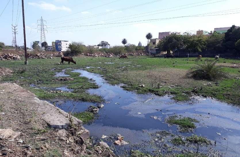घरों के आस-पास भर रहा है सीवेज का पानी, बदबू फैलने हुआ जीना मुहाल