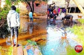 Video : बांसवाड़ा : माही की खस्ताहाल नहरों से निकलकर घरों में घुसा पानी, विभाग की बेपरवाही से ग्रामीण झेल रहे परेशानी