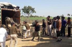 तस्करी के लिए ले जाए जा रहे थे मवेशी, ग्रामीणों ने पकड़वाए दो ट्रॉला