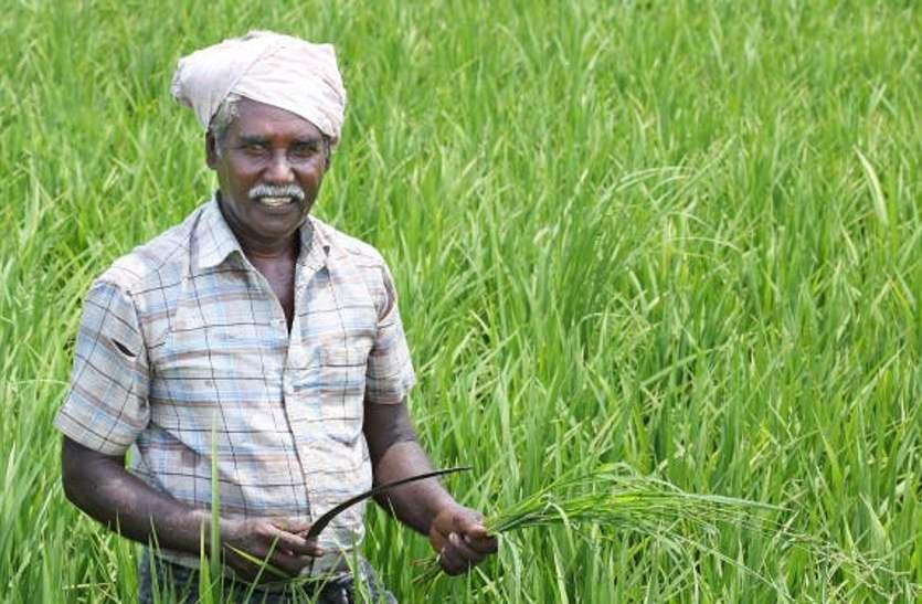 किसानों का 21.50 करोड़ से अधिक कर्ज माफ, नामान्तरण, बंटवारे के अधिकार ग्राम पंचायत को देने की तैयारी