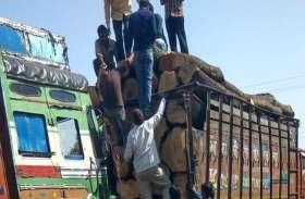 रात के अंधेरे में मंडी पहुंच रहे लकड़ी भरे ट्रक