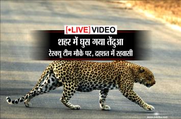 live video: शहर में घुसा तेंदुआ, फारेस्ट की टीम मौके पर, दहशत में रहवासी