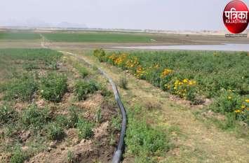 किसान खेती के लिए कर रहा पानी चोरी, पेयजल के लिए 72 घंटे में मिल रहा पानी