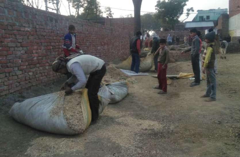 आवारा गौवंश से परेशान किसानों की समस्या के लिए इस महिला ग्राम पंचायत अधिकारी ने निकाला ऐसा रास्ता, जिसे देखकर हर कोई कर रहा उसकी सराहना, देखें वीडियो