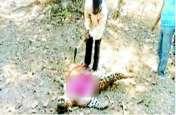 वन विभाग की लापरवाही: बिना डॉक्टर के ड्रेसर ने कर दिया तेंदुए का कुल्हाड़ी से पोस्टमार्टम