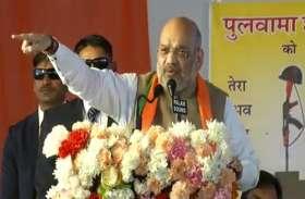 'भाजपा न कभी पराजय से निराश होती है, न कभी जीत का अहंकार रखती है': अमित शाह
