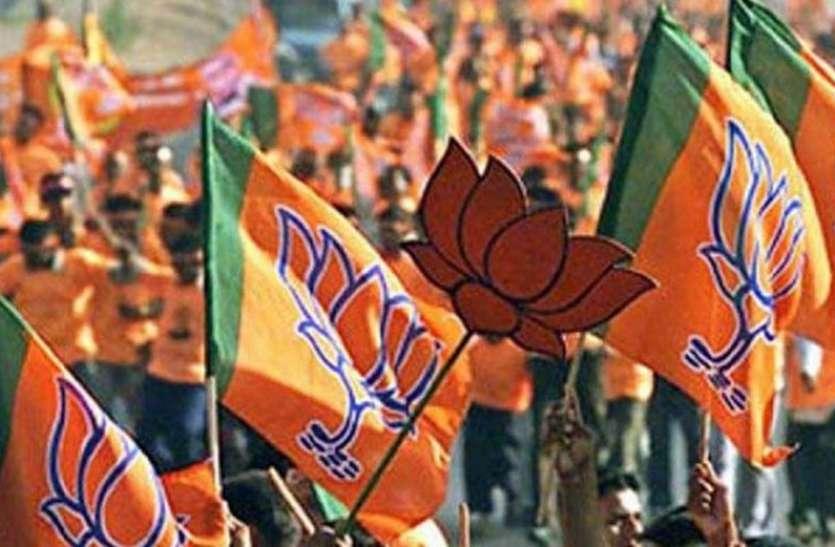 भाजपा नहीं तलाश पा रही क्रॉस वोटिंग करने वाले पार्षद