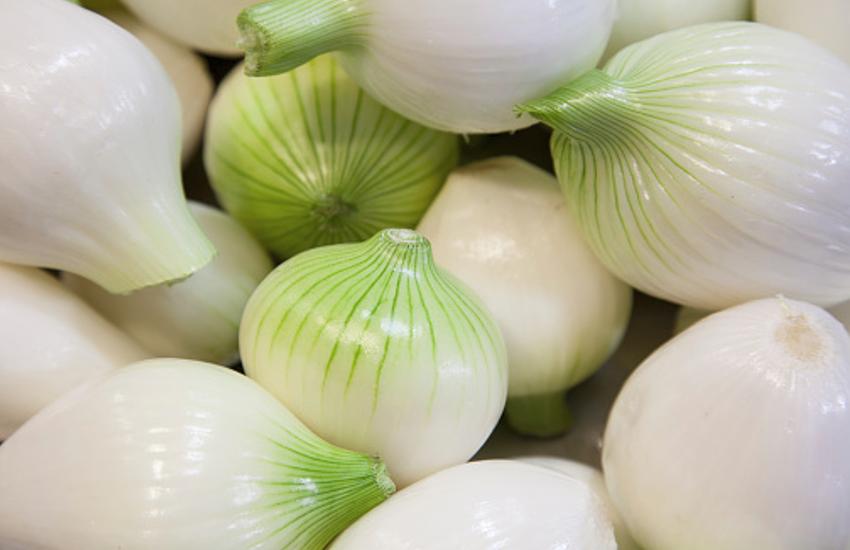 हरा प्याज खाएं, रोग प्रतिरोधक क्षमता बढ़ाएं
