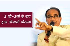 भाजपा राष्ट्रीय उपाध्यक्ष का बड़ा बयान, '2 जी-3जी घोटाले के बाद हुआ जीजाजी घोटाला'