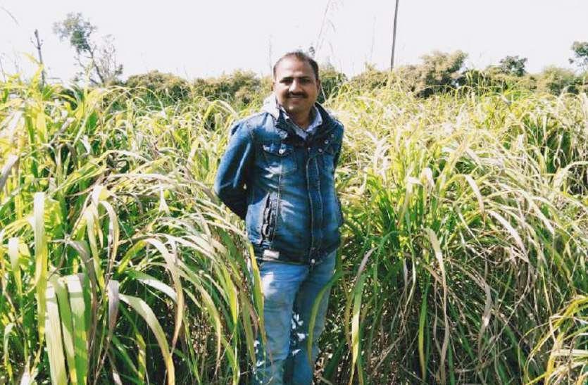 चारा से तेल निकालकर किसान कमा रहा 10 लाख रुपए सालाना, यकीन नहीं तो पढ़ें खबर