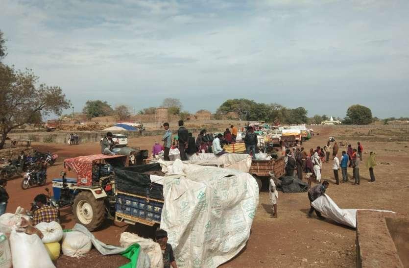 व्यापारियों ने नहीं खरीदी सरसों, किसानों ने किया हंगामा
