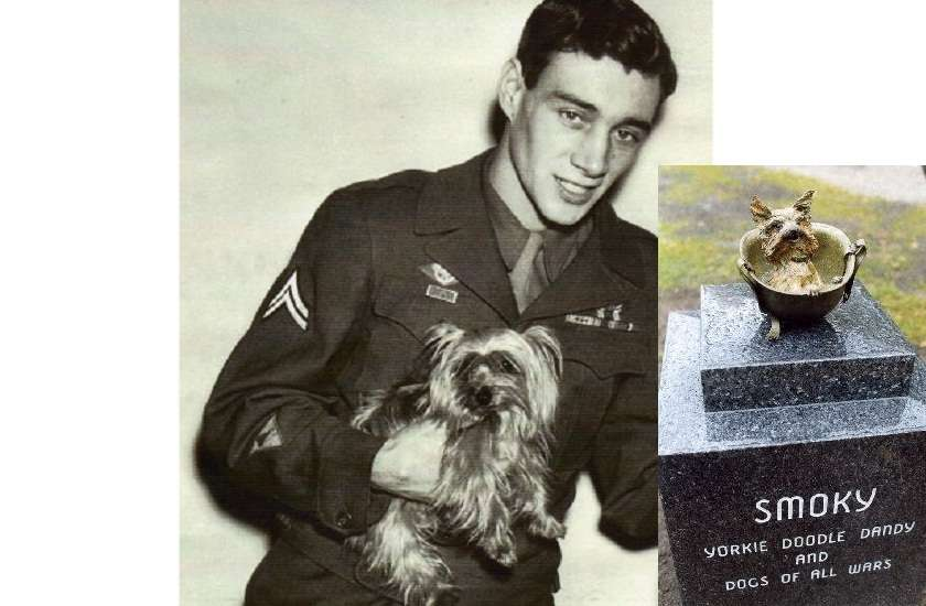 famous war dog who served in World War II