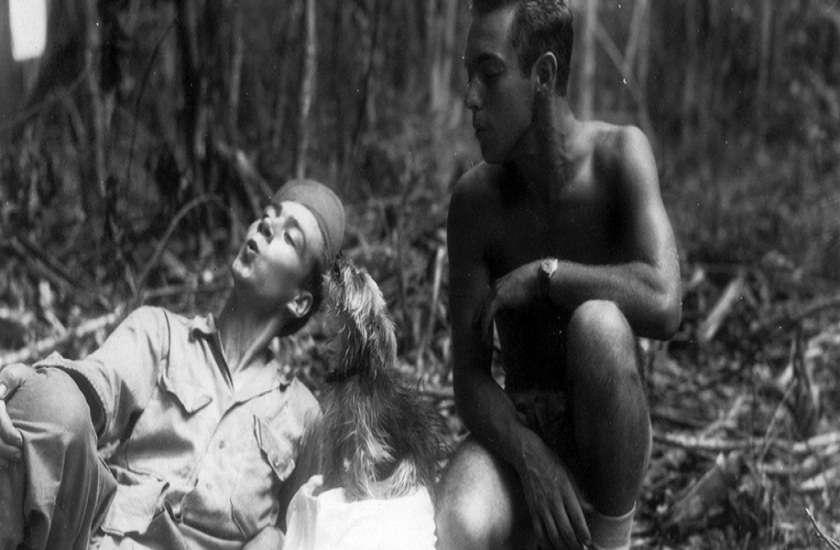World War II Hero Dog smoky