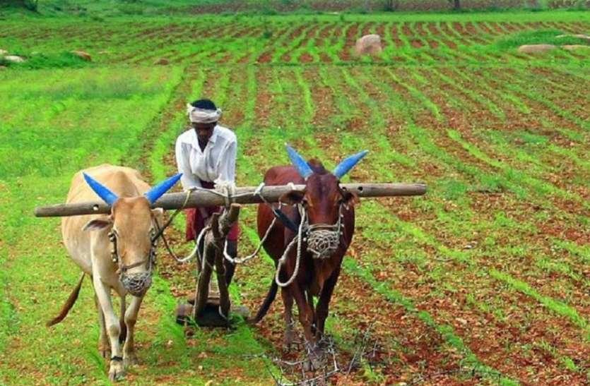 सरकार ने किया वादा पूरा, किसानों के खाते में जमा हुई 430 रुपए भावांतर की राशि
