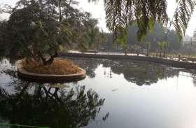 pics - चौंक जाएंगे आप भी जब देखेंगे शहर के इस खूबसूरत उद्यान की तस्वीरें ........