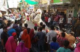 video : उदयपुर में यहां महाशिवरात्रि पर्व को लेकर निकाली शाेेभायात्रा, शिवालयों में हुए धार्मिक अनुष्ठान