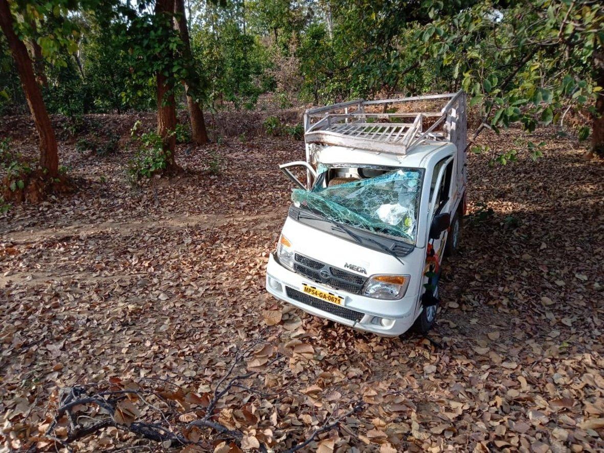 अनियंत्रित मैजिक पेड़ से टकराई, दो गम्भीर