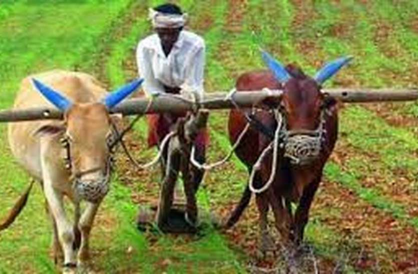 ये क्या यहां नकदी मिलने से पहले ही काट रहे हैं किसानों की जेब