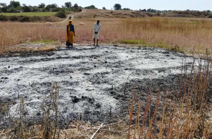 खेत में कटी पड़ी सरसों की फसल में आग लगाई