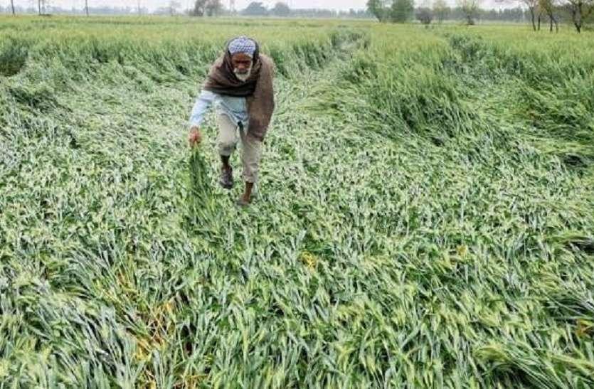 किसानों को सामाजिक सुरक्षा के तौर पर मिलेगा पेंशन सम्मान