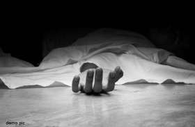 गोवंश बचाने के प्रयास में गाड़ी पलटी, दंपती की मौत, सात अन्य घायल