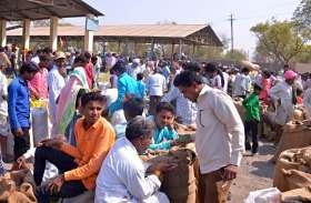 सौंफ की खुशबू से महक रही मंडी, किसान नाखुश