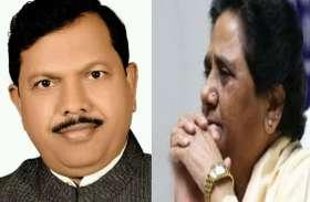 इस बसपा नेता को पार्टी से निकालना मायावती को पड़ा भारी, कई नेता देंगे इस्तीफा