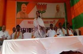BJP उपाध्यक्ष ने कहा- देश में है मोदी लहर, कार्यकर्ता घर-घर जाकर मांगे वोट